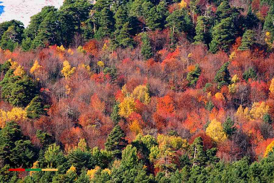 best time to go to spain: the colours of fall